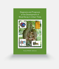 Diagnosis and Prognosis of the Development of Wood Decay in Urban Trees