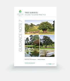 Guidance Note 7: Tree Surveys – A Guide to Good Practice